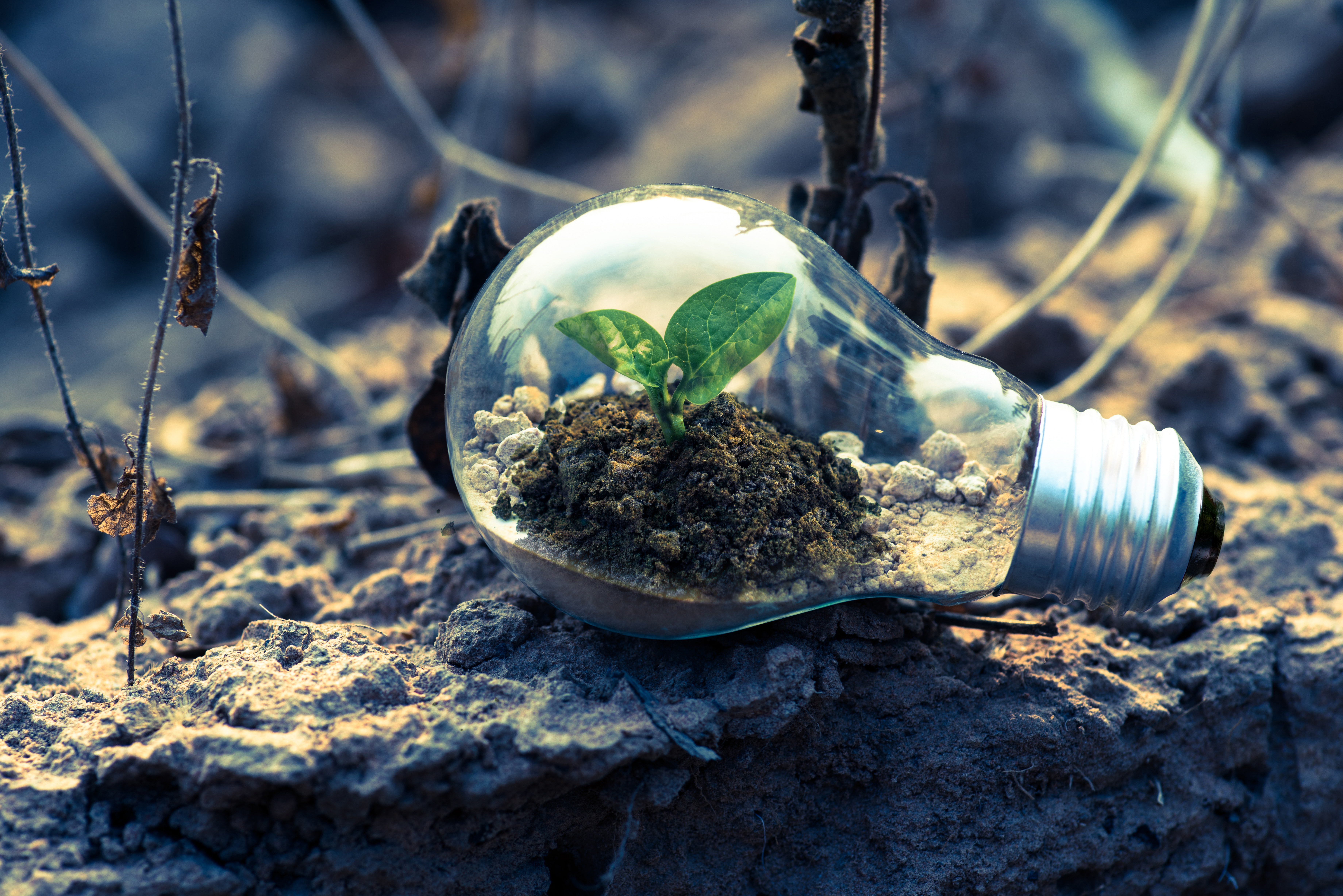 Sustainable finance – today or tomorrow?